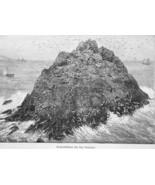 CALIFORNIA Seal Rocks Cliffs near San Francisco - 1883 German Print - $16.20