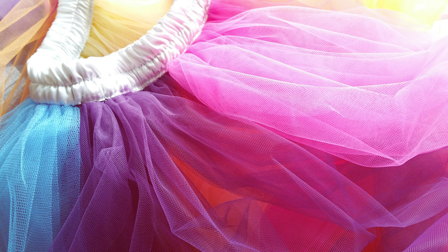 Adult RAINBOW Color Elastic Waist Maxi Floor Length Tulle Skirt Ballerina Skirt