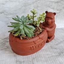 Winnie the Pooh Planter with Succulent Arrangement, Redware Animal Plant Pot image 4