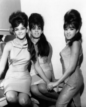 1960's The Ronettes Ronnie & the Ronettes 8 X 10 Black & White Photo Pic... - $9.99