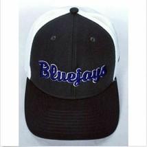 Westminster College Fulton Blue Jays Men's Gray Strapback Hat Cap - $29.20
