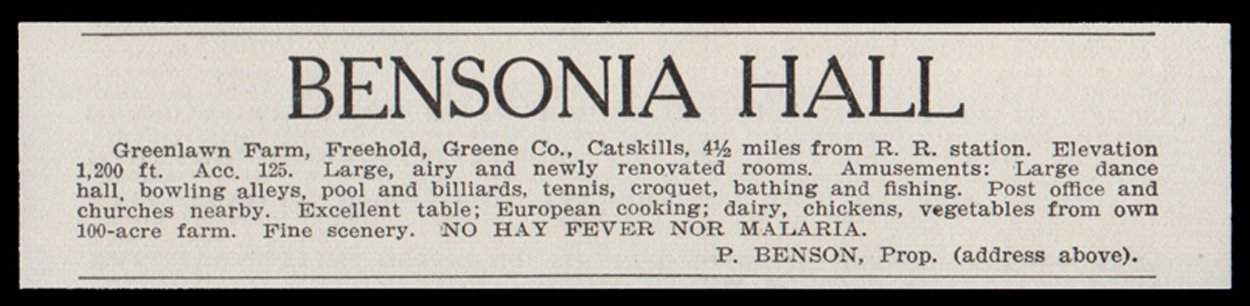 Freehold Catskills 1915 Bensonia Hall Greene Co NY No Malaria Hotel Print AD
