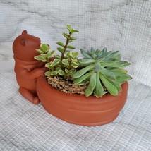 Winnie the Pooh Planter with Succulent Arrangement, Redware Animal Plant Pot image 6