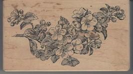 Stampa Barbara Rubber Stamp K-409 flower sprig S5 - $11.64