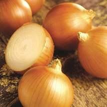50Pcs Onion Walla Walla Sweet Vegetable Seeds Allium Cepa Seed - $19.27