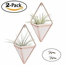 Trigg Hanging Planter Vase & Geometric Wall Planter/Pot Hanging Decor Co... - $28.54 CAD