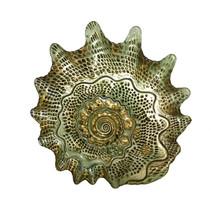 Nautical Art Glass Dish Beach Decor Beach Seashell Platter Mothers Day Gift - $89.00