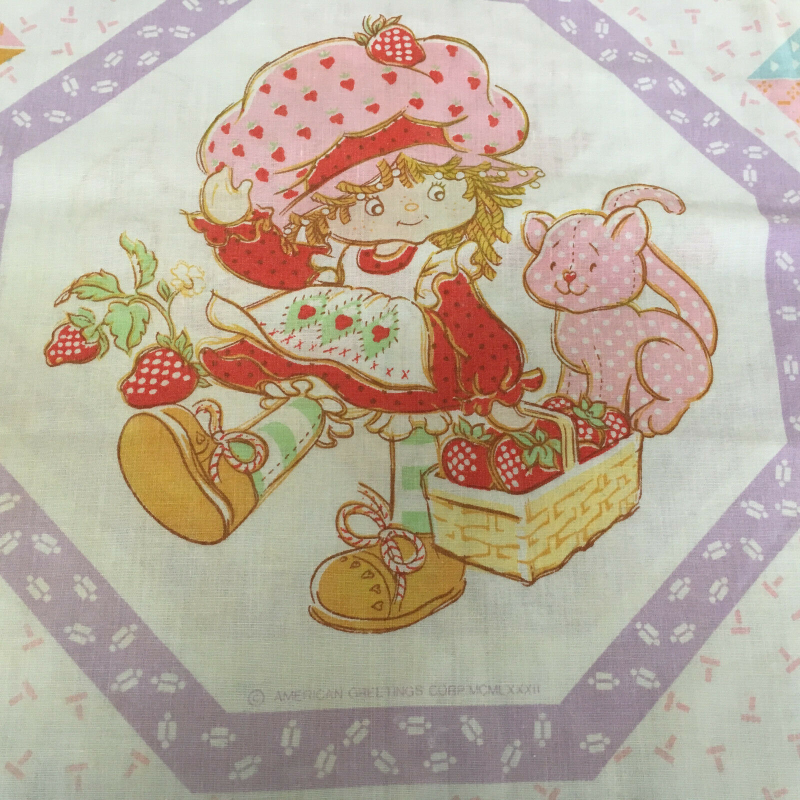 Primary image for vintage strawberry shortcake sheet and pillow case strawberry shortcake friends