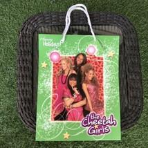 Cheetah Girls Disney Christmas Gift Bag Christmas Holiday NEW - $9.89