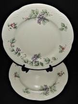 2 Pfaltzgraff USA Grapevine Dinner Plates Stoneware Purple Grapes Pink F... - $32.66