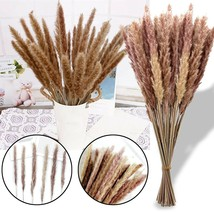 Hot 30pc Bulrush Natural Dried Flowers Artificial Plants Branch Ins Pamp... - $15.14