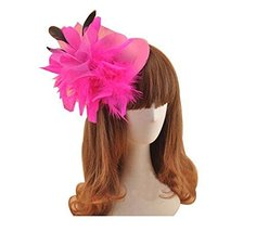 Beautiful Charming Feather Hairpin for Parties/Stage/Wedding,Hat,Rose