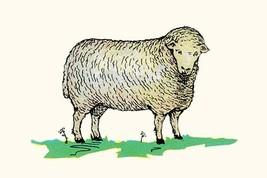 Sheep by Queen Holden - Art Print - $19.99+