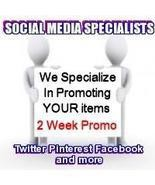 Social Media Specialists 14 Day Twitter Package + Media  - $18.00