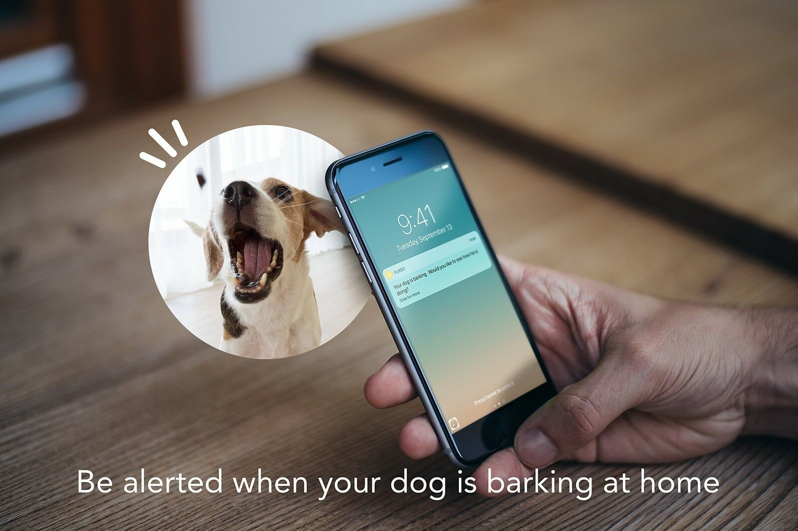 Furbo Dog Camera: Treat Tossing HD Wifi Cam and 2-Way Audio