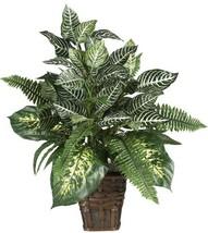 Nearly Natural 6528 Greens Zebra with Wicker Decorative Silk Plant, Green - $48.02