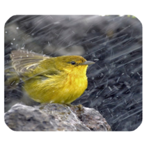 Mouse Pads Beautiful Animal Yellow Bird in The Snow Rain Game Anime Mousepads - $6.00