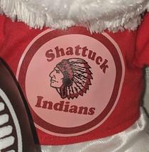 Steven Smith 900KR CIDCO Shattuck Indians 9 Inch  Football Bear image 2