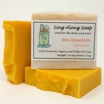 CITRUS Soap, Vegan Soap, Essential Oil Scented Soap, Natural Soap, Handm... - $8.99
