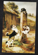 "Vintage Postcard Puppies / Dogs Climbing Post to Get Cat ""Baffled"" Walte... - $4.46"