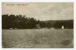 Breezy Point Beaver Lake New Jersey Albertype Postcard 1930's - $17.82