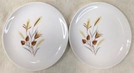"6 1/2"" Wheat Fall Pattern Plates 2CT Salad Dessert Bread China - $19.75"