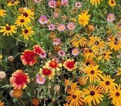 Non GMO Bulk All Perennial Wildflower Seed Mix (10 Lbs) - $440.55
