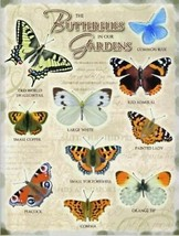 The Butterflies in our Gardens, Pictures with Names Fridge Magnet - $3.55