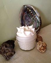 Buffalo Tallow Dandelion Oil Honey Cream 4oz Whipped Acne Rosacea Eczema Dermati - $34.99
