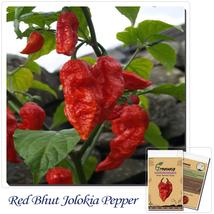 50 pcs Red Bhut Jolokia Seeds Ghost Pepper Vegetable Seeds - $2.99