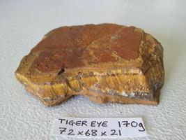 170g Large Natural rough & polished brown Tigers eye Quartz Crystal Spec... - $32.33