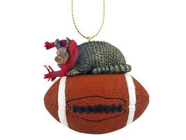 Armadillo Football Ornament - $17.99