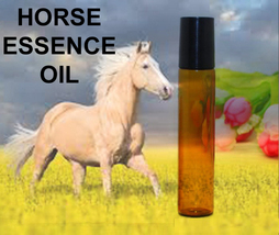 Haunted 27x Essence Horse Freedom Bridging Gaps Independence Oil Magick CASSIA4 - $23.00