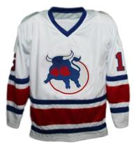 Custom Name # Birmingham Bulls Retro Hockey Jersey New Hanson White Any Size image 1