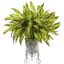 Aglaonema with Metal Planter  - ₨4,145.26 INR
