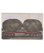 Exaggerated Potato AT & SF Railroad Car 1910c postcard - $6.93