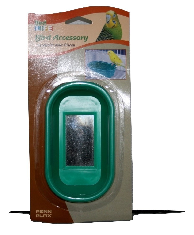 Bird Life Accessories, Bird Bath with Mirror on Bottom inside, Teal Green