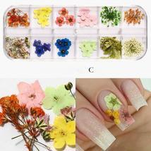 Dry Flowers Nail Art Decorations 3D Natural Daisy Sun Flower - 12 Colors / Box image 7