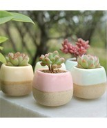 Pack of 5 Ceramic Succulent Planter Pots Cactus  Flower Multi Color Plan... - $12.99
