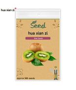Eeds mini kiwi fruit seed bonsai plants delicious kiwi berry 100 seeds bag.jpg 640x640 thumbtall