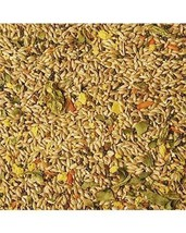 Volkman Avian Science Super Canary Bird Seed 4 Lb - $15.89