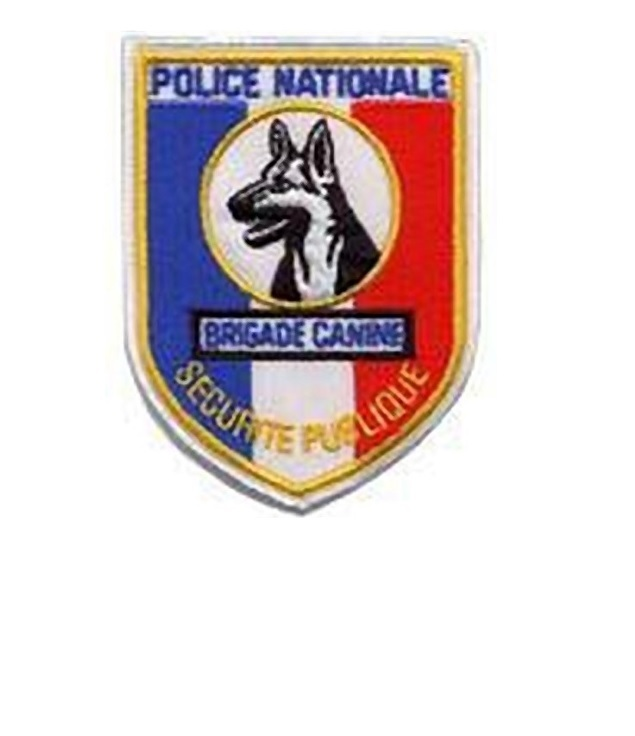 Nale securitee publique brigade canine french national police k 9 unit velcro 4.25 3.25 in 10.99