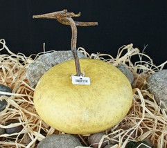 CRATE & BARREL FAUX GOURD -NWT- FALL INTO A UNIQUE DISPLAY FOR AUTUMN - $19.95