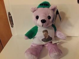 NSYNC Chris Kirkpatrick Teddy Bear Plush Beanie Lavender Green White jacket - $12.19