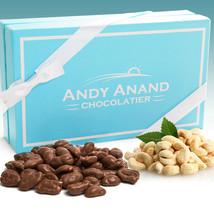 Andy Anand Belgian Milk Chocolate Cashews Sea Salt Gift Box Free Air Shipping - $22.84
