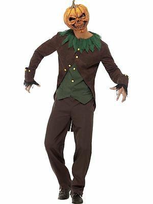 Goosebumps Jack-O'-Lantern Costume, Medium, Halloween Fancy Dress, Mens