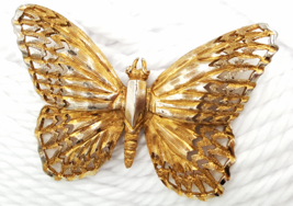 Schrager Gold Tone Butterfly Brooch Highly Detailed Cutouts Vintage Earl... - $44.00