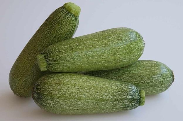 Grey Zucchini Squash Seeds 10 SEEDS NON-GMO
