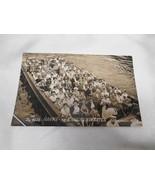 Old Vtg 1958 HAVNE-og KANALRUNDFARTEN Real Photography Postcard RPC - $19.79