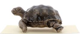 Hagen-Renaker Miniature Ceramic Turtle Figurine Desert Tortoise image 5